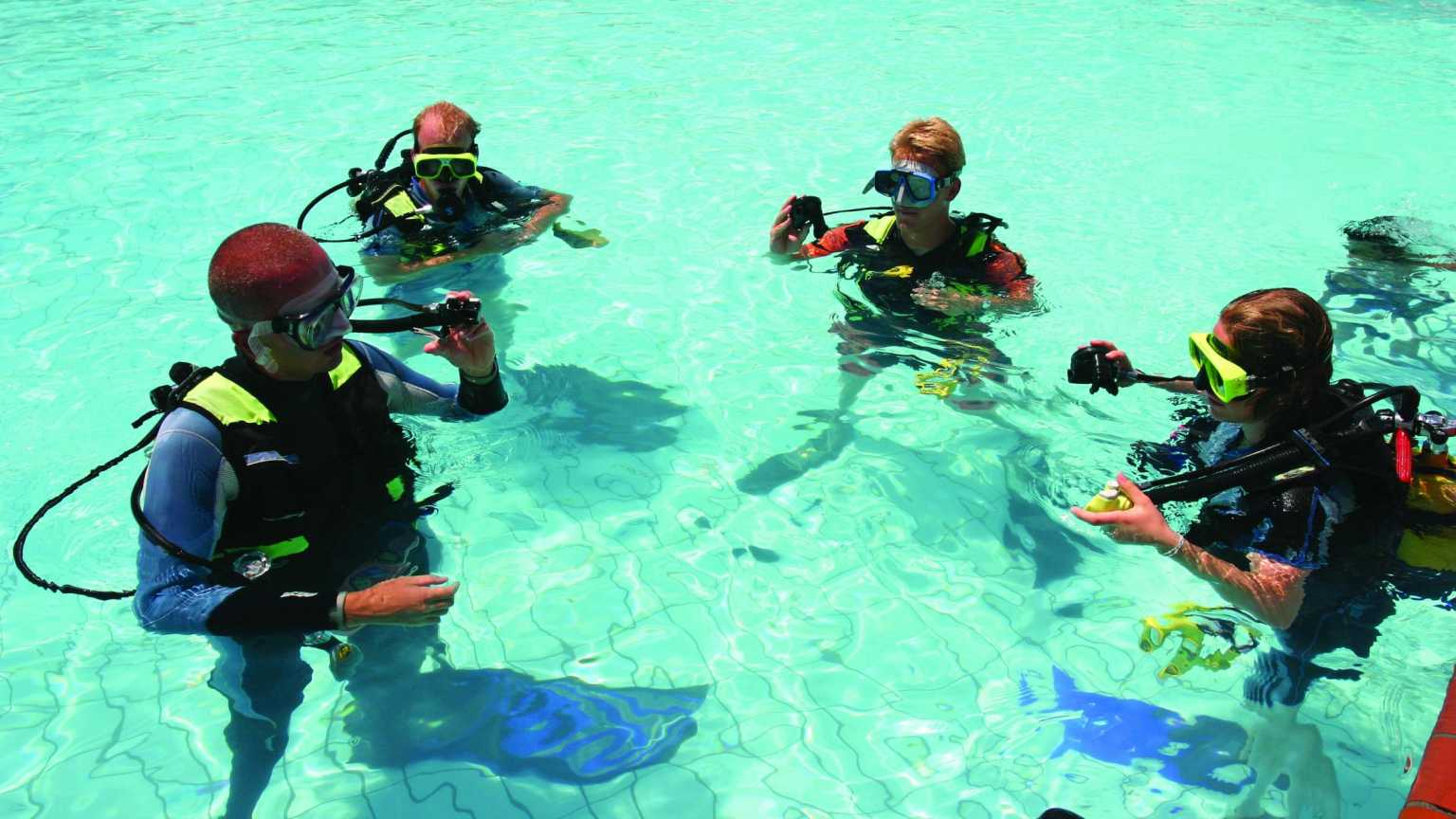 Adults learning to scuba dive